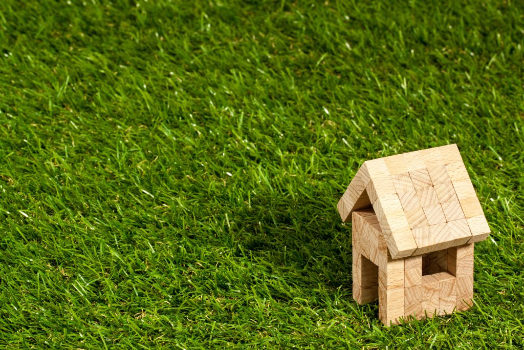 Photo of grass and a toy house